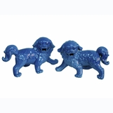 Kong Foo Dogs Set | Blue