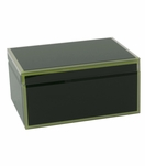 Nemo Large Glass Box | Green