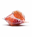 Sanibel Glass Conch Shell | Red Swirl