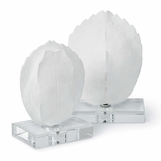 Torta Shell Sculptures Set