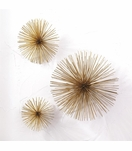 Wallflowers Wall Sculptures Set | Gold
