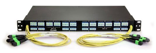 12 MTP to 48 LC Fiber Optic Breakout Panel, Front-Facing, Singlemode OS2