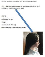 How to measure Hair Length on a Cosmetology Mannequin Head