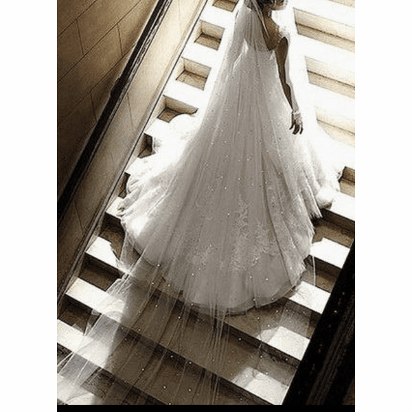 Scattered crystal cathedral wedding veil with blusher