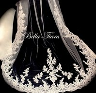 Stunning beaded lace cathedral wedding veil