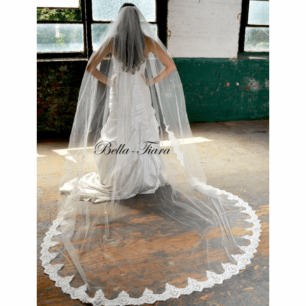 Stunning beaded lace regal cathedral wedding veil