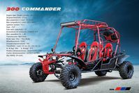 4-Seater 300CC COMMANDER