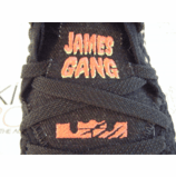LeBron XVII James Gang
