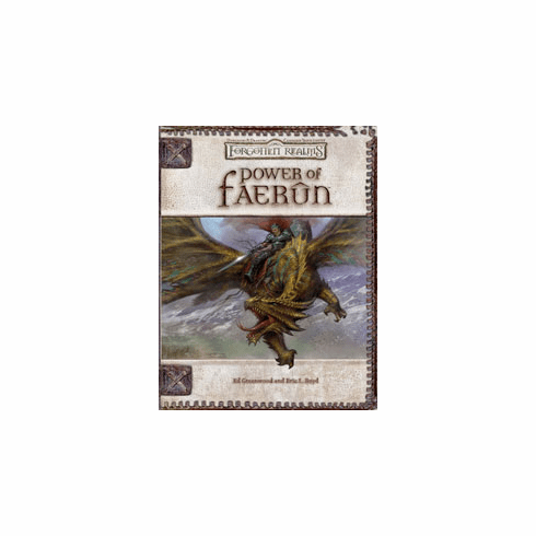 Hasbro Dungeons & Dragons Forgotten Realms Power of Faerun Source Book