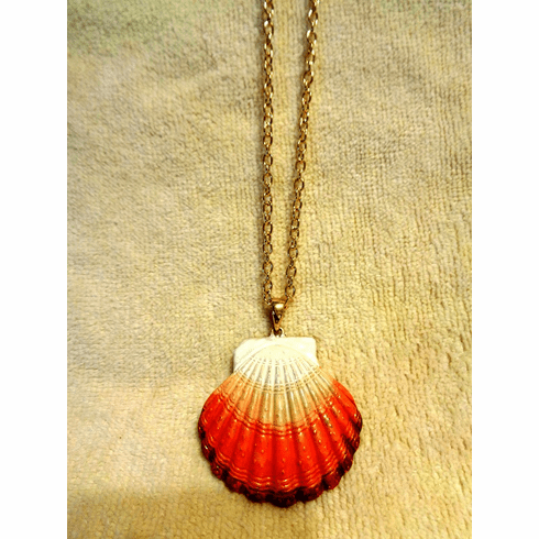 Coral Color Shell Pendant Necklace