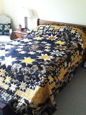 """Celestial Stars"" Quilt by Careen in BC, Canada"