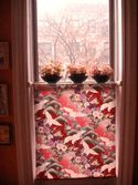 Window Shade by Steven G. in NY