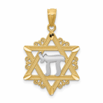 14K w/Rhodium Star Of David Pendant