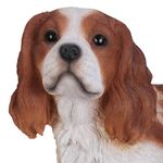 "17"" King Charles Spaniel Statue ""Ultra-Realistic"""