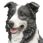 "20"" Border Collie Sitting ""Ultra-Realistic"""