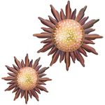 "24"" Mesa Sun Wall Decor (Set of 2)"