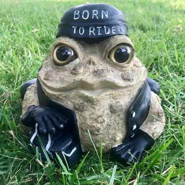 Biker Toad - Natural - Click to enlarge
