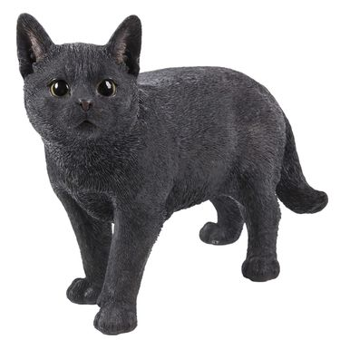 Black Cat Statue - Looking Left - Click to enlarge