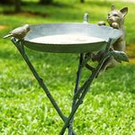 Curious Cat & Bird Birdbath