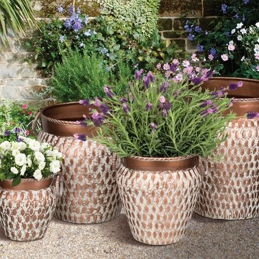 Egyptian Nesting Planters (Set of 4) - Click to enlarge