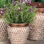 Egyptian Nesting Planters (Set of 4)