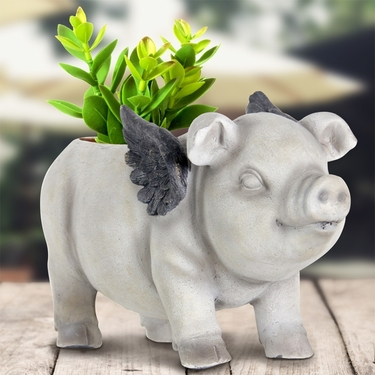 Flying Pig Planter - Click to enlarge