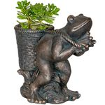 Frog Basket Flower Pot - Bronze Finish