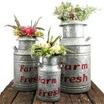 Galvanized Old Style Milk Jugs (Set of 3) - Red