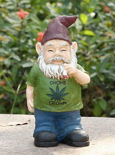Gnome Grown - USA - Click to enlarge