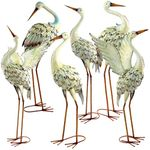 Assorted Great White Herons (Set of 6)
