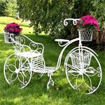 "Large Iron Tricycle Plant Stand ""Stephania"""
