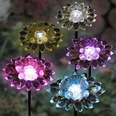 Mini Solar Dahlia Stakes Stakes (Set of 5) - Click to enlarge