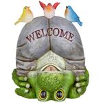 Silly Solar Welcome Frog w/Birds