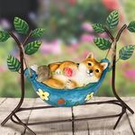Solar Fox in Hammock