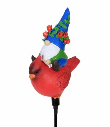 Solar Gnome Riding Cardinal - Click to enlarge