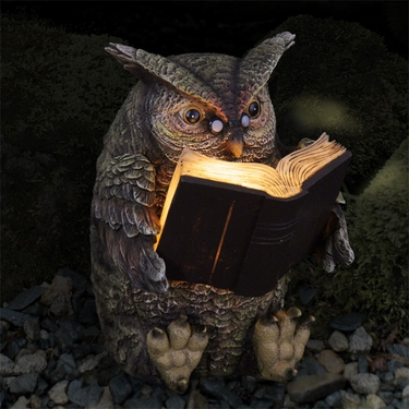 Solar Owl Reading Book - Click to enlarge