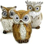 Solar Owls w/Light Up Eyes (Set of 3) - Assorted