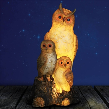 Solar Triple Owls on Stump - Click to enlarge