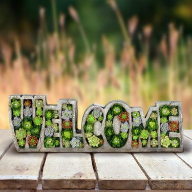 Solar Welcome Succulent Marquee Sign - Click to enlarge