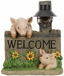 Welcome Pigs w/Solar Lantern