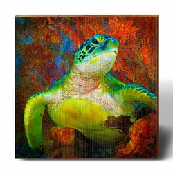 Amber Coral Cover Sea Turtle Beach Wall Art<font color=a8bb35> NEW</font>