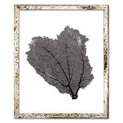 Classic Sea Fan Beach Wall Art - Black