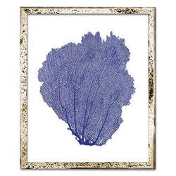 Classic Sea Fan Beach Wall Art - China Blue