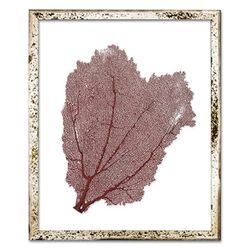 Classic Sea Fan Beach Wall Art - Coral