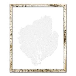 Classic Sea Fan Beach Wall Art - Sail White