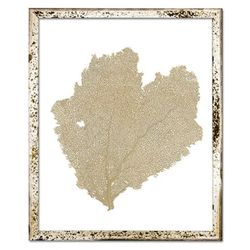 Classic Sea Fan Beach Wall Art - Sand Dune