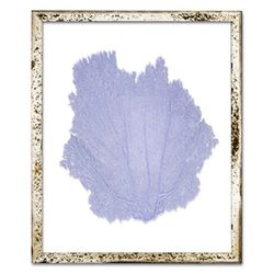 Classic Sea Fan Beach Wall Art - Sea Lavender