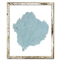 Classic Sea Fan Beach Wall Art - Teal