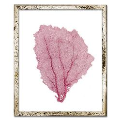 Classic Sea Fan Beach Wall Art - Tropical Pink
