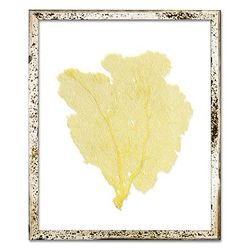 Classic Sea Fan Beach Wall Art - Yellow